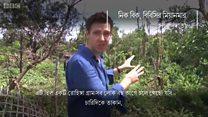 যে রোহিঙ্গা গ্রামটি বিবিসিকে দেখতে দিতে চায়নি মিয়ানমার
