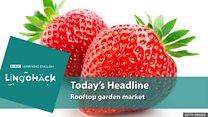 Supermercado belga venda frutas e verduras colhidas em horta no telhado