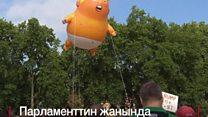 """Бул үйлөтүлгөн """"Бала Трамп"""" АКШ президентин капага салды"""