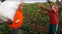 Agricultores fazem sucesso no YouTube com 'causos' e humor sertanejo
