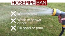Millions affected by hosepipe ban