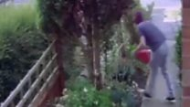 Man falls through fence with stolen gnome