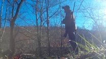 Hunt master filmed setting badger trap
