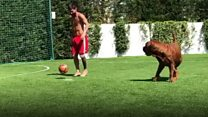 Messi has a kickabout with his dog