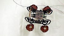 Could a robotic cockroach aid rescues?
