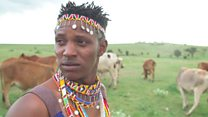 The Maasai boy who chased away lions