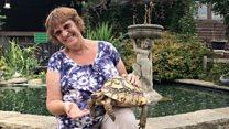 Meet the Tortoise Lady