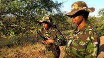 The Black Mambas protecting elephants