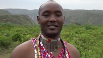 Maasai battle to save vultures