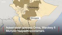 Oromoo Ormaa