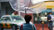 ٹائیفون جیبی: جاپان میں تباہی کے مناظر
