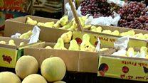 حملة مقاطعة للفواكه في مصر بسبب ارتفاع أسعارها