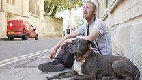 В Оксфорде инновации приходят на помощь бездомным