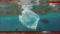 سازوکاری تازه برای پاکسازی اقیانوسها از پلاستیک
