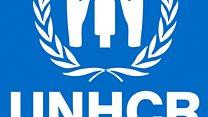 آیا سازمان ملل متحد به پناهجویان در ترکیه پشت کرده؟