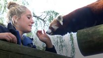 Animals help zookeeper fight rare cancer