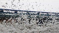 الزبد الذي يقضي على الحياة المائية في الأنهار