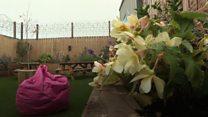 Inside NI's first prison sensory garden