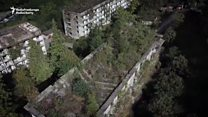 The ghost town vanishing within a forest