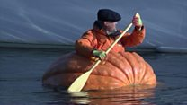 Pumpkin boat sails down River Ouse