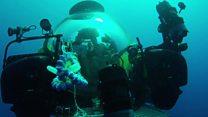 Robot arm exploring underwater life