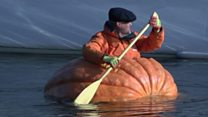 Giant pumpkin boat