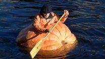 Житель Йорка сделал лодку из тыквы и сплавился в ней по реке