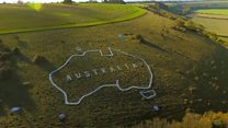Restoring Australia to an English hillside