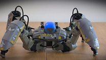 શા માટે આ રોબૉટ માર્કેટમાં ધૂમ મચાવી રહ્યો છે?