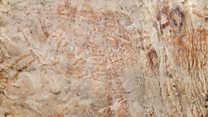 El increíble hallazgo de la primera pintura de animales de la historia