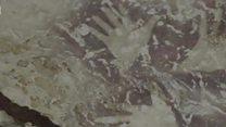 ਏਸ਼ੀਅਨ ਮਵੇਸ਼ੀਆਂ ਦੇ 40 ਹਜ਼ਾਰ ਸਾਲ ਪੁਰਾਣੇ ਚਿੱਤਰ ਹਨ