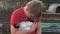 Animals 'better than meds' for Tourette's