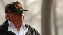 Trump: 'Finland rakes its forests'