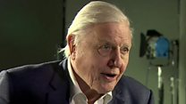 Attenborough: Climate is planet's biggest threat