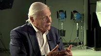 Attenborough: Gezegenimiz için hala geç değil
