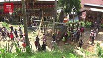 Ritual tarik batu, simbol kematian bangsawan Toraja