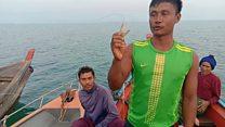 တနင်္သာရီကမ်းရိုးတန်းမှာ တရားမဝင် ငါးဖမ်းလုပ်ငန်းကြောင့် ဒေသခံတွေ ထိခိုက်နေ