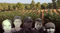 အစ္စရေးက အမေ့ခံ ထိုင်းလုပ်သားတွေ ဘဝ