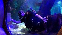 Army divers spruce up aquarium's tanks