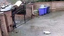 Amazon parcels thrown over gate