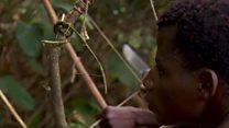 Mbilikimo wameendelea kuishi kitamaduni DRC