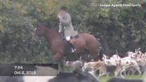 Police question pair over 'fox cub hunting' video