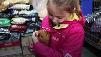 Jessica, 7, treats homeless animals for Christmas