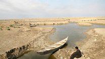 شاهد عینی: ماجرای خشک کردن مردابهای عراق