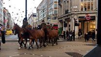 Что делают 70 лошадей в час-пик в центре Лондона