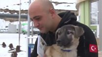 Police officer adopts dog he saved from ice