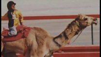 ایک بچے کی کہانی جو اونٹوں کی دوڑ میں شتر سواری سے امریکہ جا پہنچا