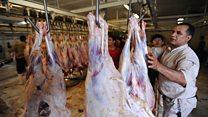 قیمتهایی که گوشت را به تن مصرف کننده آب میکنند