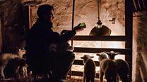 Cumbrian farmer wins photography award