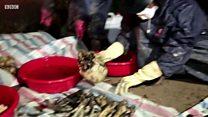 Tục lệ bốc mộ của người Việt